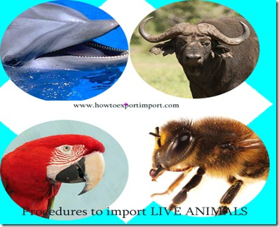 Documents to import live animals