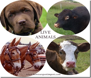 How to import Live Animals