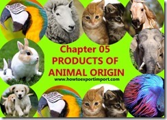 Chapter 05 PRODUCTS OF ANIMAL ORIGIN