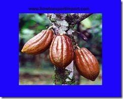 GST payable for sale of Cocoa and Cocoa preparations
