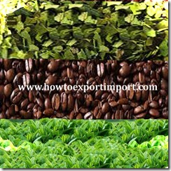Import processes for COFFEE , TEA, MATE and  SPICES