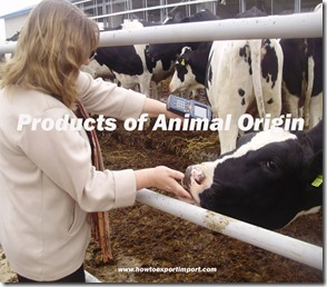 Products of Animal Origin