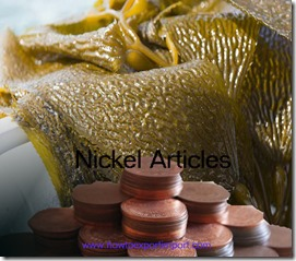 Nickel Articles