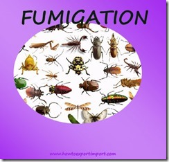 What is Fumigation in Export and Import copy