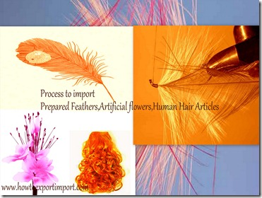 How to import human hair, feather artificial flowers etc